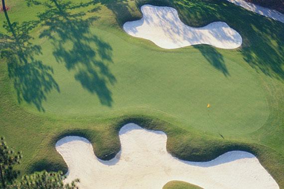 The Carolina Golf Club